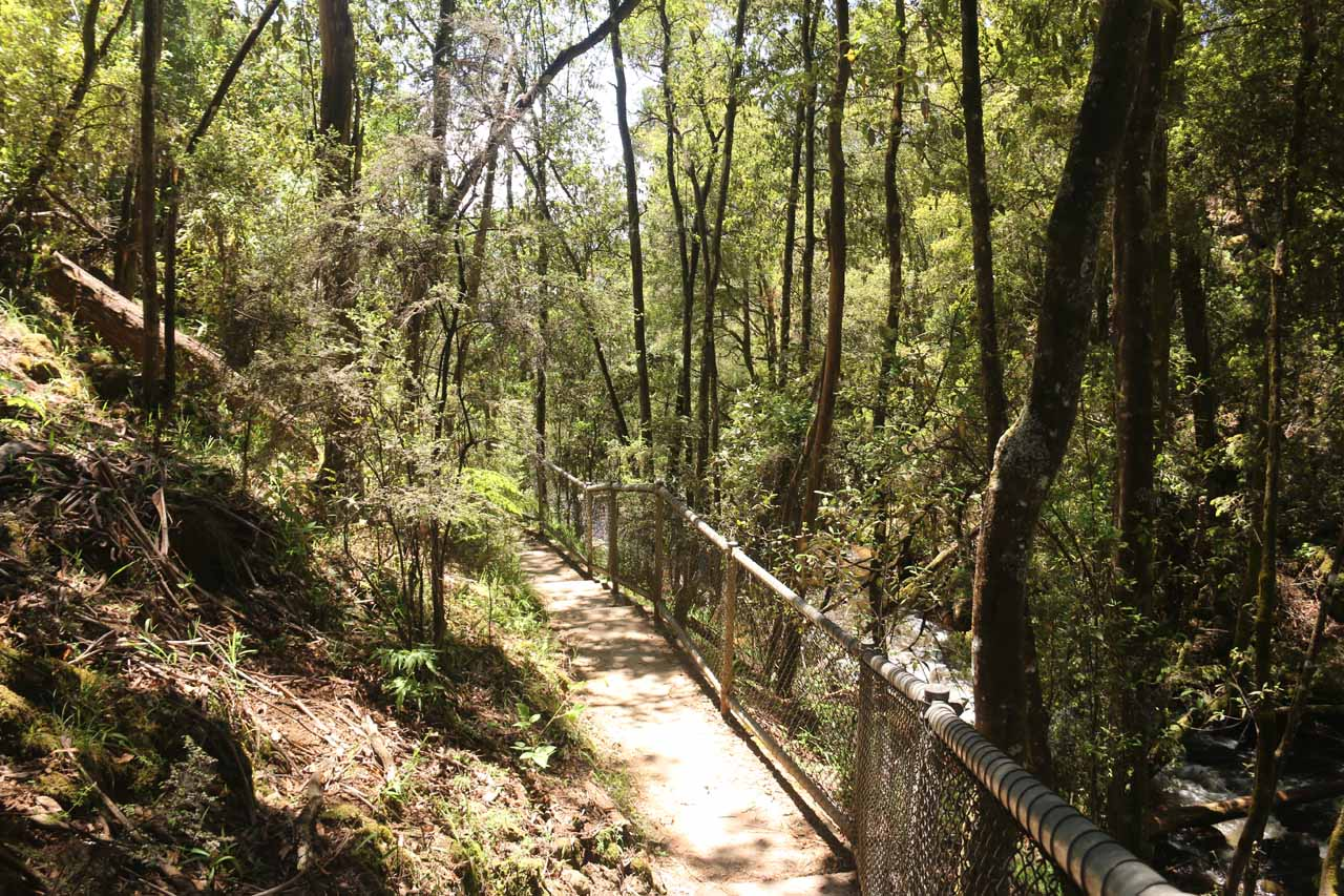 Continuing along the short but well-developed walk to the Snobs Creek Falls