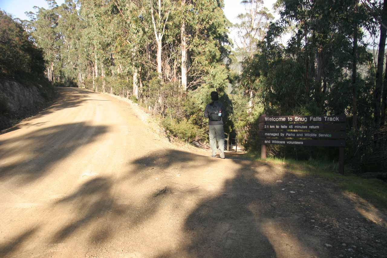 Now on the track descending towards Snug Falls