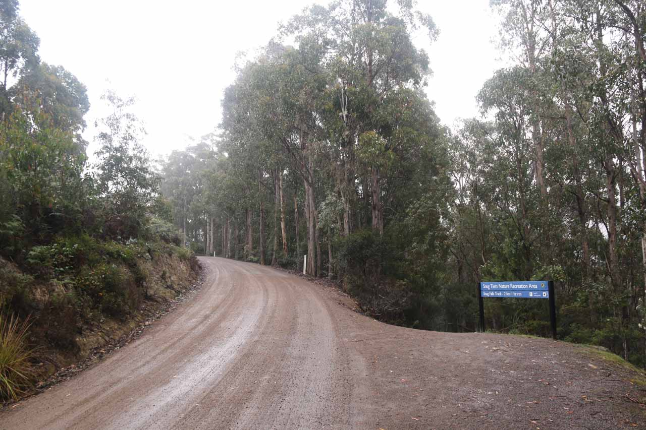 The signposted trailhead for the Snug Falls Track