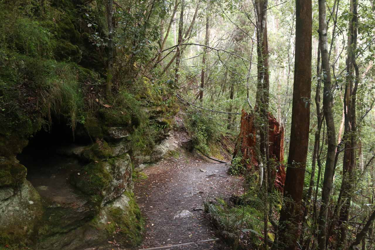 Further along the descent to Snug Falls as the scenery became even more lush, damp, and mossy green