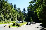 Sol_Duc_Falls_001_06222021 - The fairly spacious parking lot for Sol Duc Falls