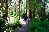 Sol_Duc_Falls_011_06222021 - Julie and Tahia on the Soleduck Trail to Sol Duc Falls