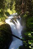 Sol_Duc_Falls_055_06222021 - Portrait look at Sol Duc Falls from the muddy footbridge over the Sol Duc River
