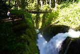 Sol_Duc_Falls_071_06222021 - Looking downstream over one of the segments of Sol Duc Falls towards the muddy footbridge