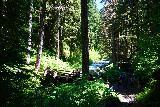 Sol_Duc_Falls_088_06222021 - Looking upstream towards the muddy footbridge fronting Sol Duc Falls