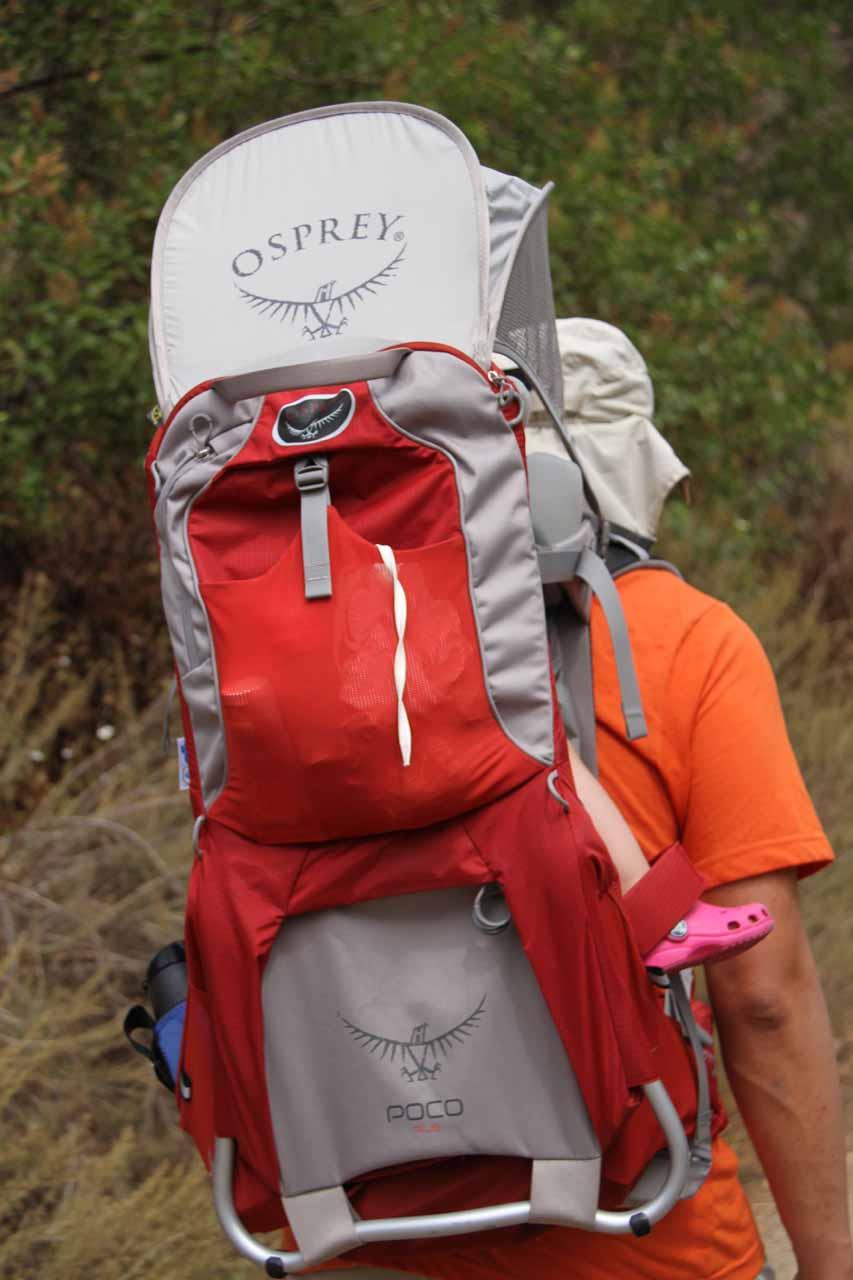 Carrying Tahia onto the trail