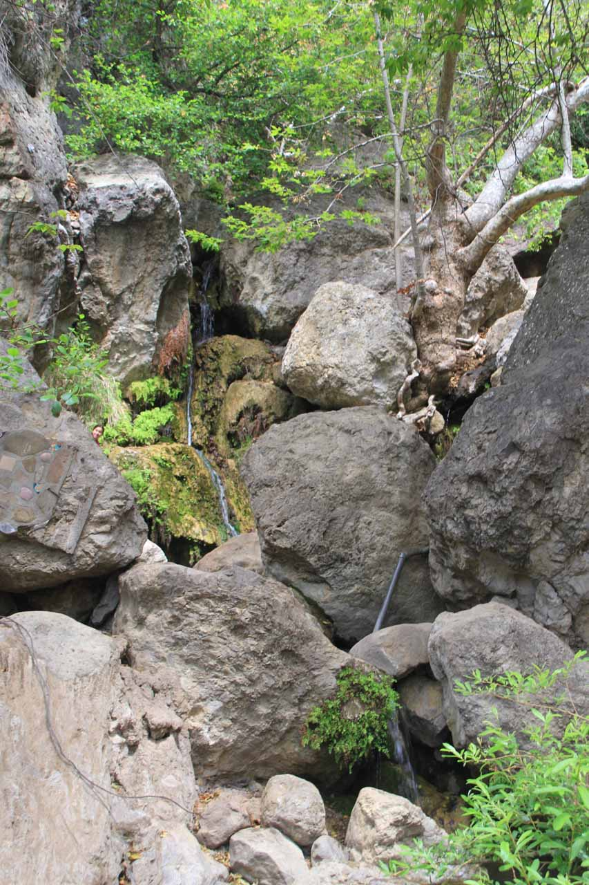 Frontal view of what was left of Solstice Canyon Falls