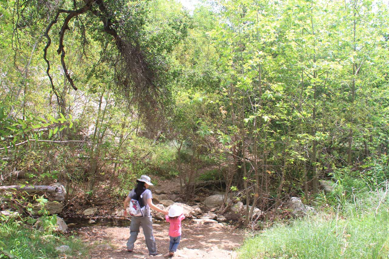 Julie and Tahia approaching a creek crossing as we took the much shorter and flatter route on the way back