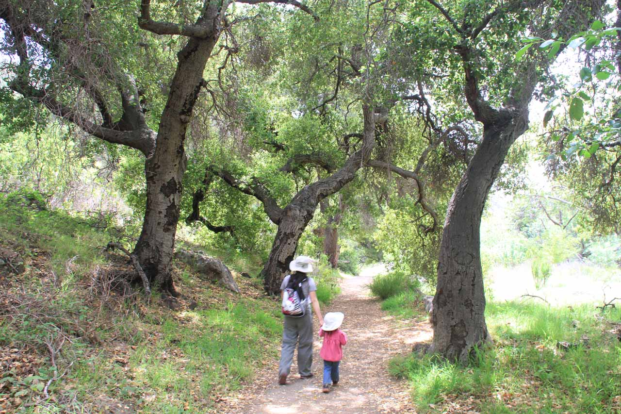 Julie and Tahia going by some black-barked trees that seemed to have been affected by the 2007 Corral Fire