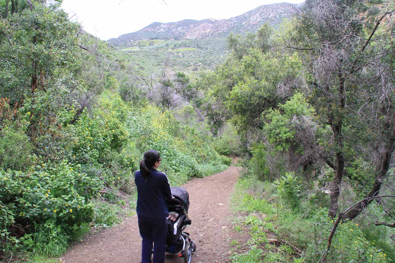 Heading downhill on a fairly bumpy (for Tahia) stretch of trail