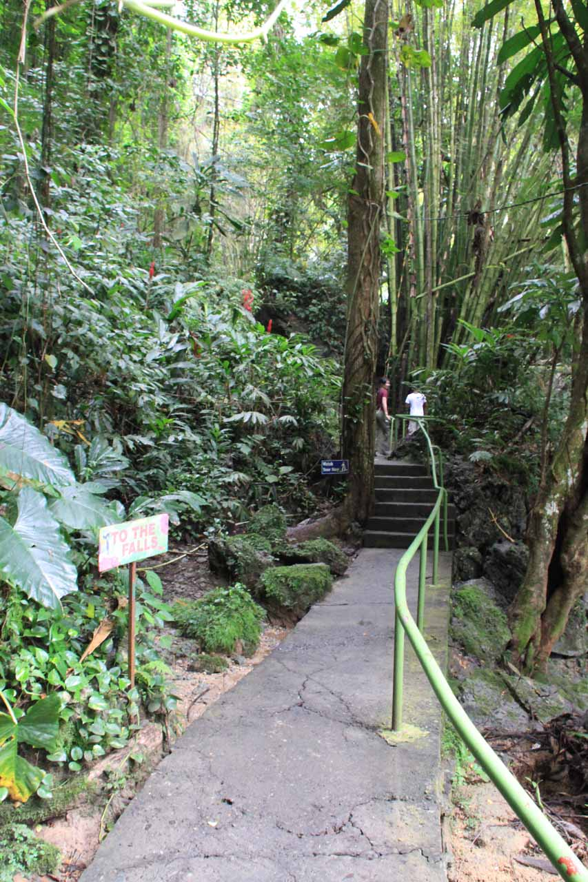 The bush-fringed walk beyond the quad area