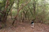 Sonoma_Creek_Falls_012_05222016