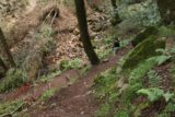 Sonoma_Creek_Falls_020_05222016 - Mom taking this little turn as we continued our descent towards Sonoma Creek Falls