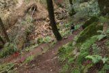 Sonoma_Creek_Falls_020_05222016