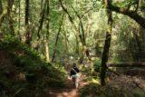 Sonoma_Creek_Falls_022_05222016