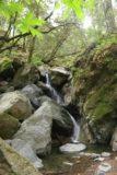 Sonoma_Creek_Falls_025_05222016