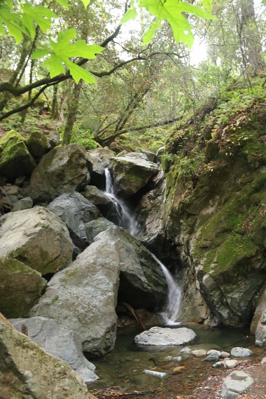 Sonoma Creek Falls