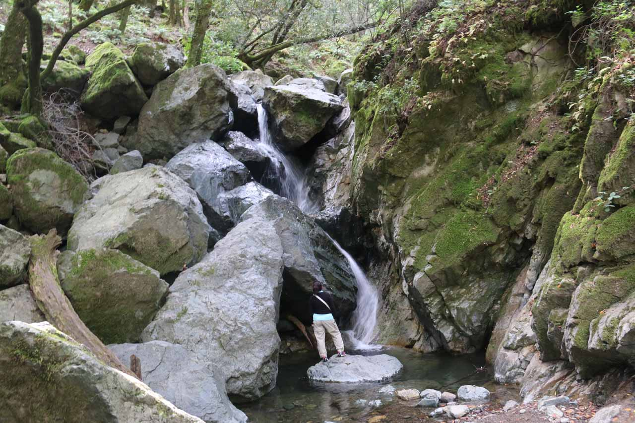 Mom scrambled right up to the base of Sonoma Creek Falls for an even closer look
