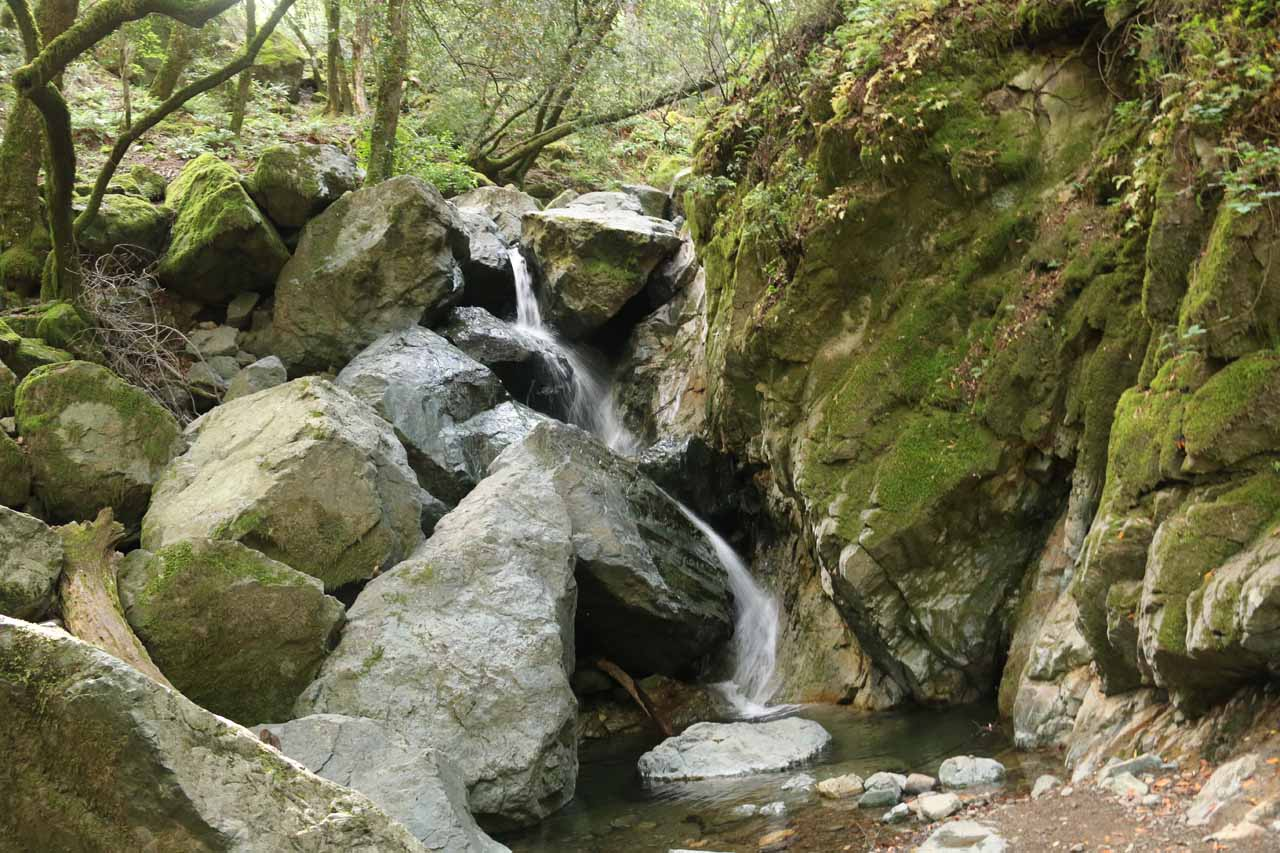 Sonoma Creek Falls with pretty healthy flow