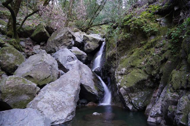 Sonoma_Creek_Falls_059_02212020 - Sonoma Creek Falls