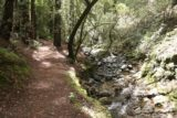Sonoma_Creek_Falls_063_05222016