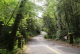 Sonoma_Creek_Falls_083_05222016 - Looking back at the hilly part of Adobe Canyon Road from the gate