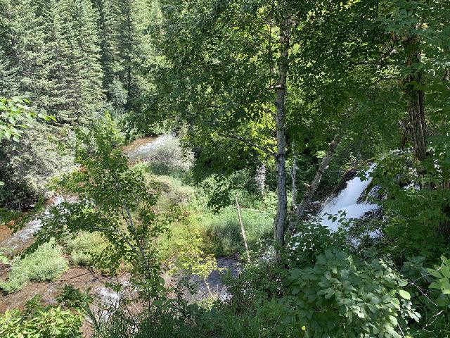 Spearfish_Canyon_009_iPhone_07302020 - Looking down from the brink of Spearfish Falls by the parking lot for the Latchstring and the waterfall