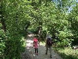 Spearfish_Canyon_023_iPhone_07302020 - Tahia and Julie walking within the forest cover of some trees in Spearfish Canyon