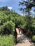 Spearfish_Canyon_032_iPhone_07302020 - Julie and Tahia crossing a footbridge over Spearfish Creek on the way to the base of Spearfish Falls