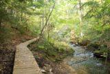 Spray_Falls_hike_248_09302015 - Back amongst the peaceful boardwalk trail near the car park