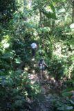 Spyke_Falls_001_11292008 - Peter Simon leading us through an overgrown path to the falls