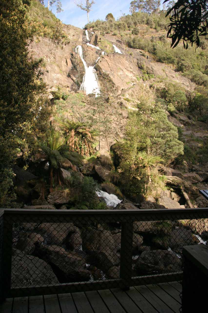 Looking towards the St Columba Falls from a lookout at the end of the track