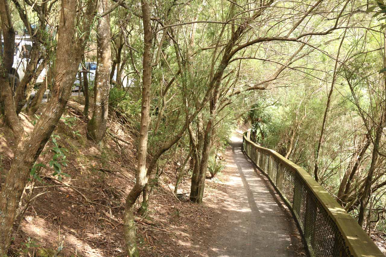 The well-developed downhill walk towards the bottom of St Columba Falls