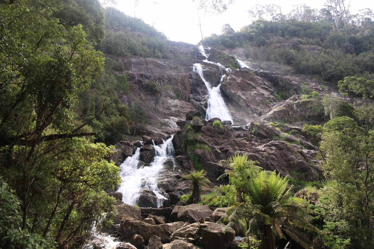 Looking up at the St Columba Falls from the end of the track