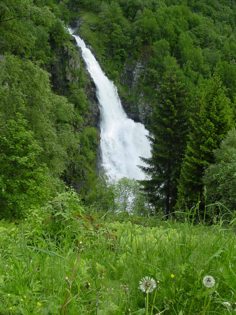 Somewhere near the half-way point down Stalheimskleiva was probably our cleanest view of Sivlefossen