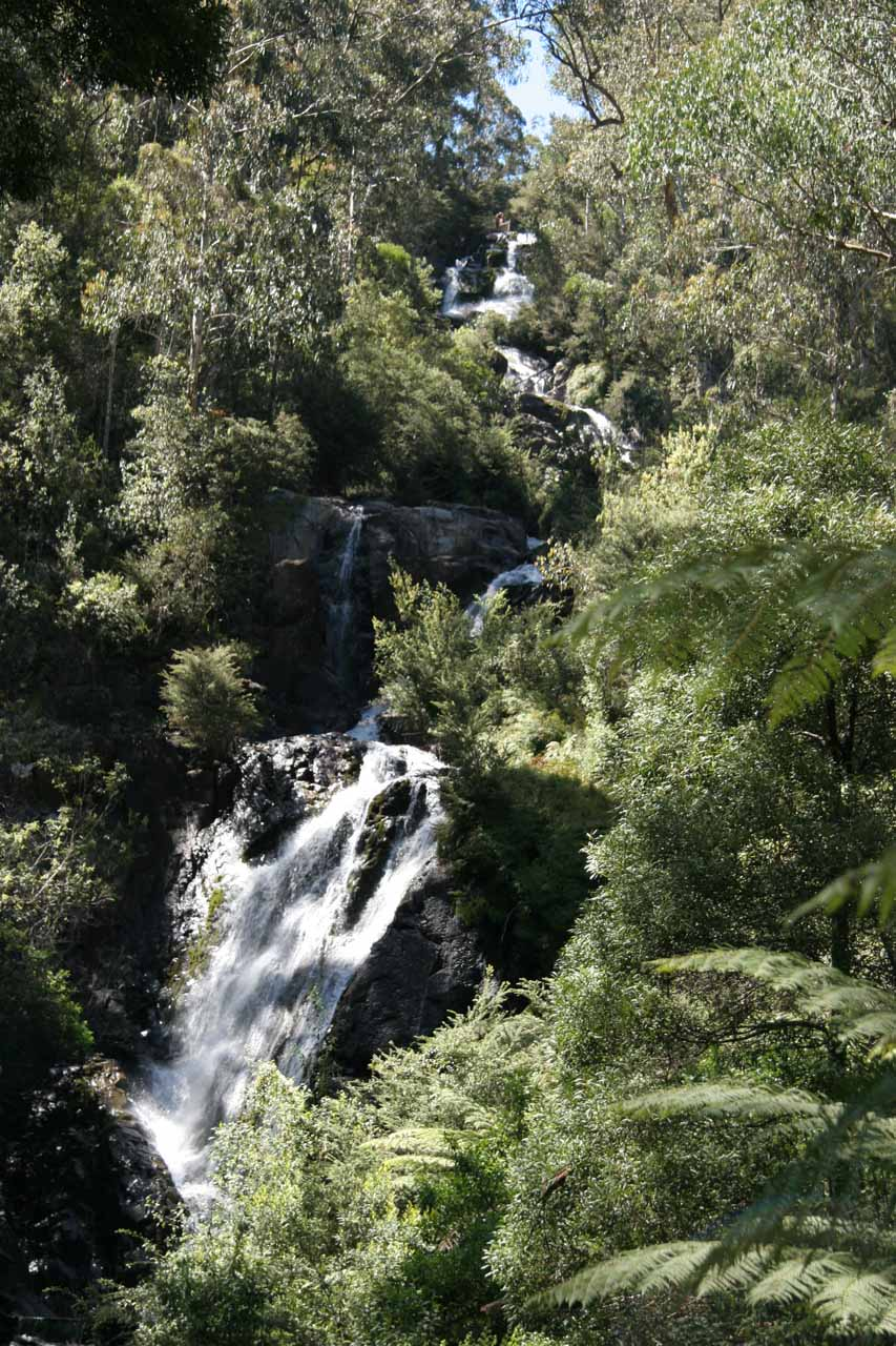 Looking up at part of Steavenson Falls