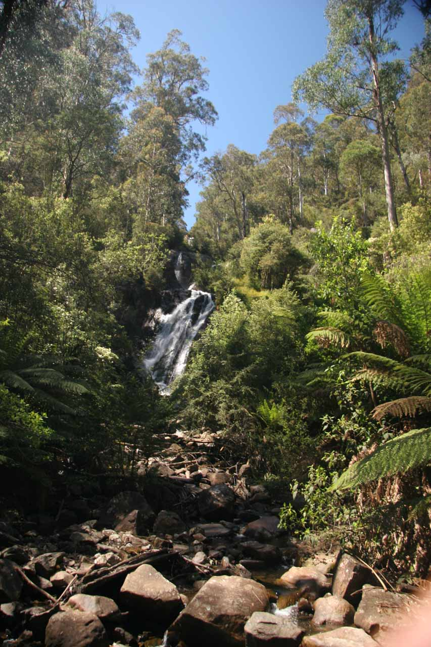 More distant look at Steavenson Falls from a footbridge