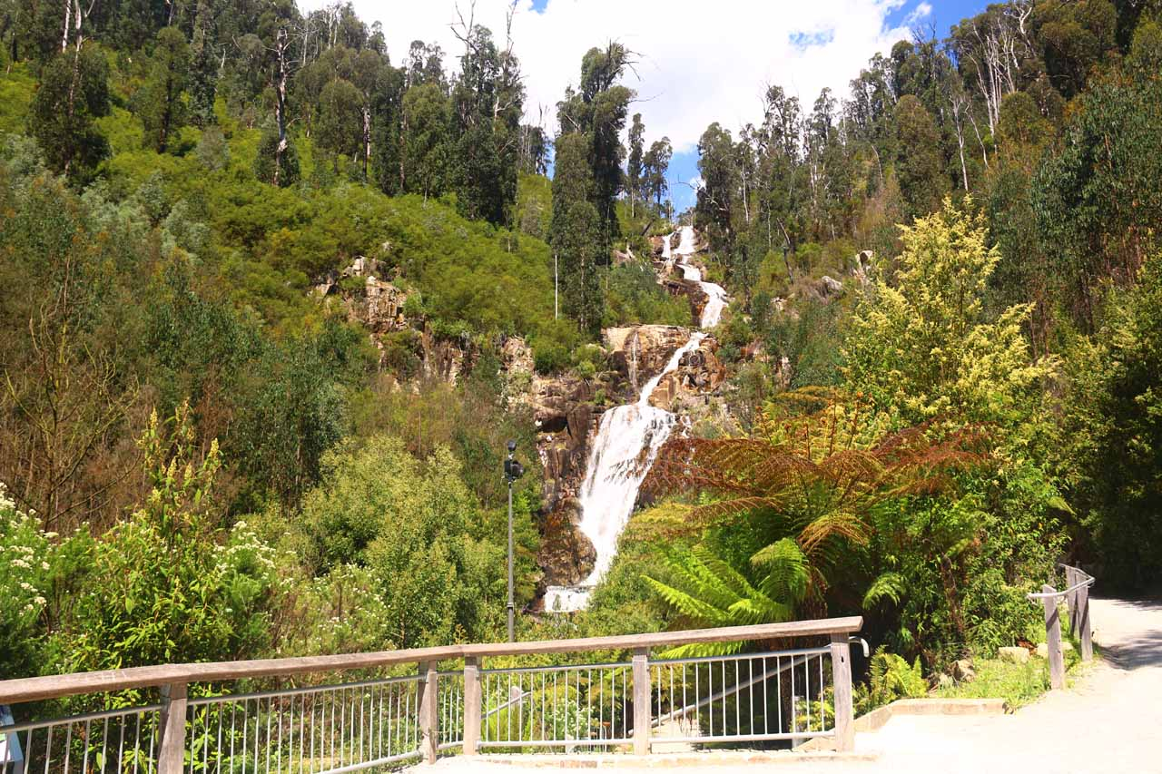 This was the lookout of the Steavenson Falls, which I contended was probably the best spot to appreciate the entirety of the waterfall