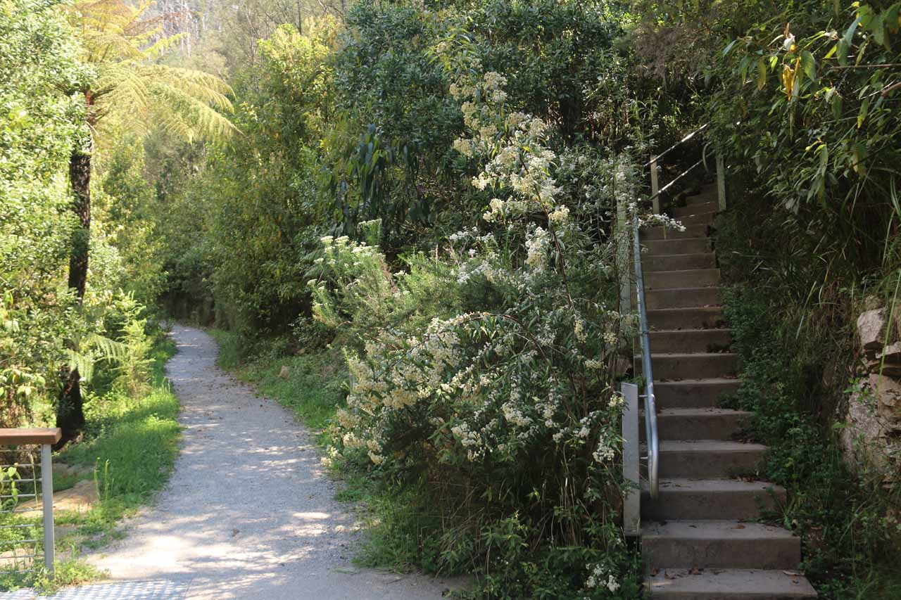 Going back up the steps to rejoin the main walking path