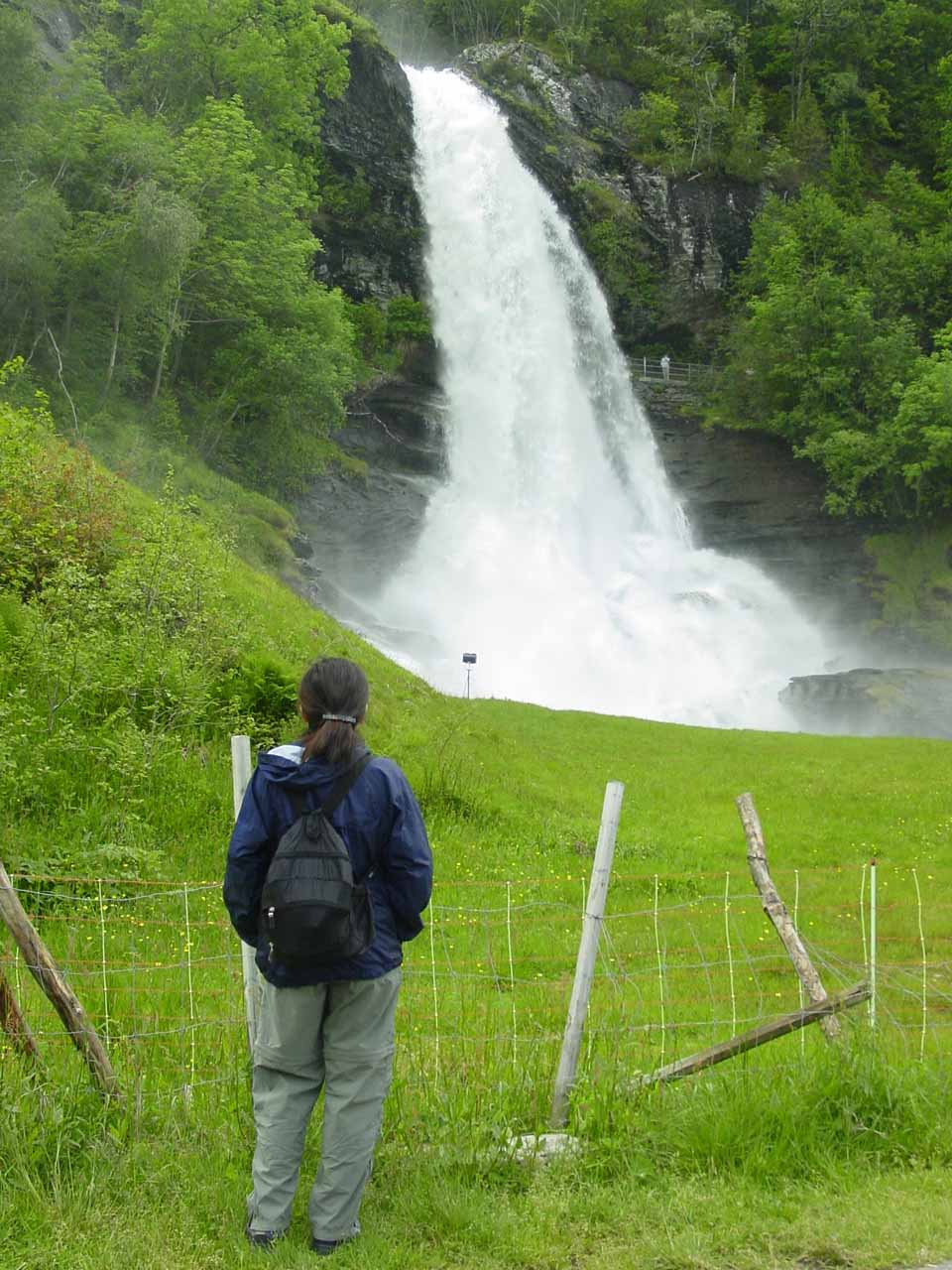 As soon as we got out of the car, here was Julie checking out Steinsdalsfossen