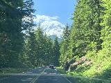 Stevens_Canyon_Rd_002_iPhone_06212021 - Following a slower car with parts of Mt Rainier revealing itself as I approached from the Ohanapecosh Entrance