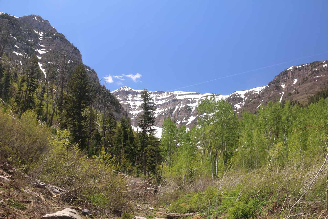 Initially, the Stewart Falls Trail meandered in the direction of that cirque up ahead