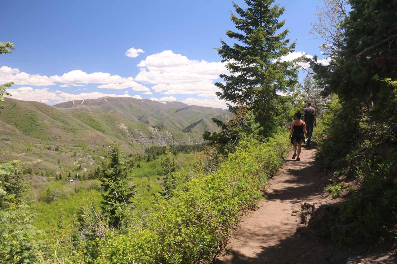 As the Stewart Falls Trail climbed higher, it provided some nice views of the valley below to the left