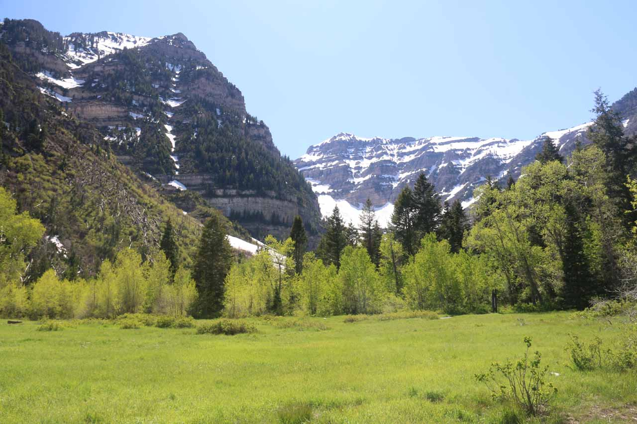 This was the kind of scenery that I was able to enjoy from the Mt Timpanogos Trailhead at Aspen Grove