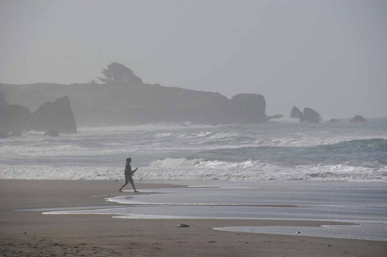 Just prior to visiting Cataract Falls, we paid a brief morning visit to Stinson Beach just as the fog was starting to burn off