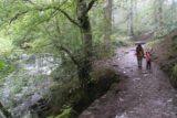 Stock_Ghyll_Force_008_08182014
