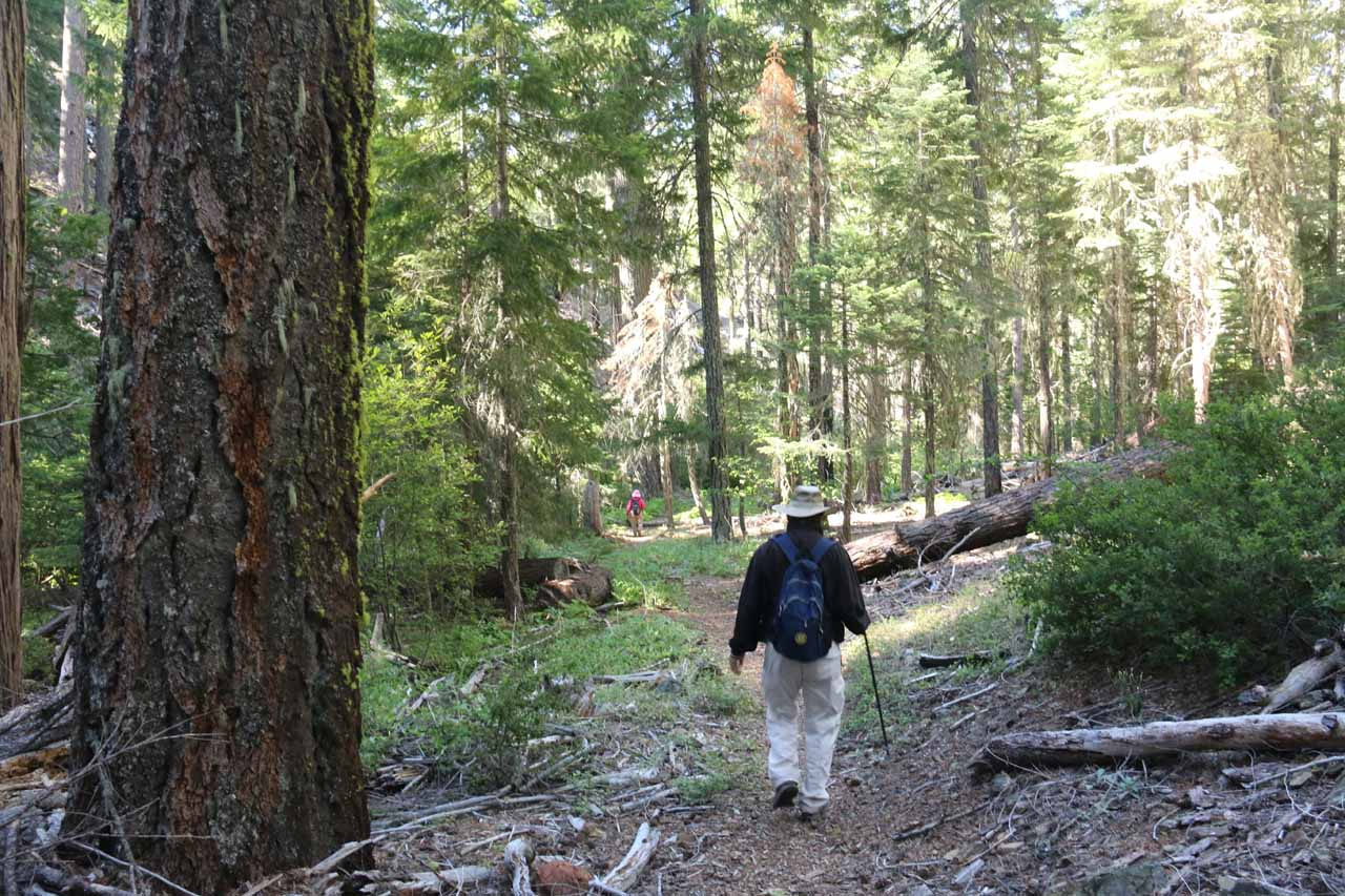 Once the initial descent flattened out, we found ourselves in a well-shaded forested area