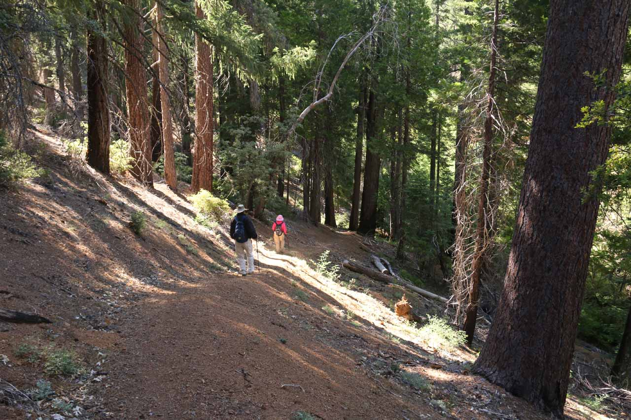 Now Mom and Dad were on the next leg of the descent leading us down to the Middle Fork Stony Creek