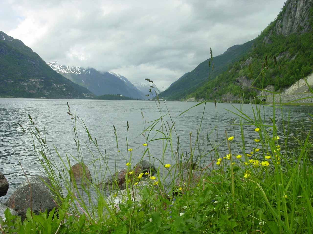The lake of Sandvinvatnet was beautiful in its own right as shown by this photo with wildflowers in bloom along its shores