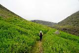 Strutsfoss_053_08112021 - Mom continuing to hike along Villingadalur amongst the low-lying shrubs